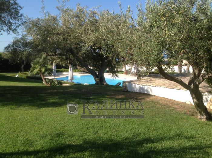 Luxury villa with private garden and swimming pool